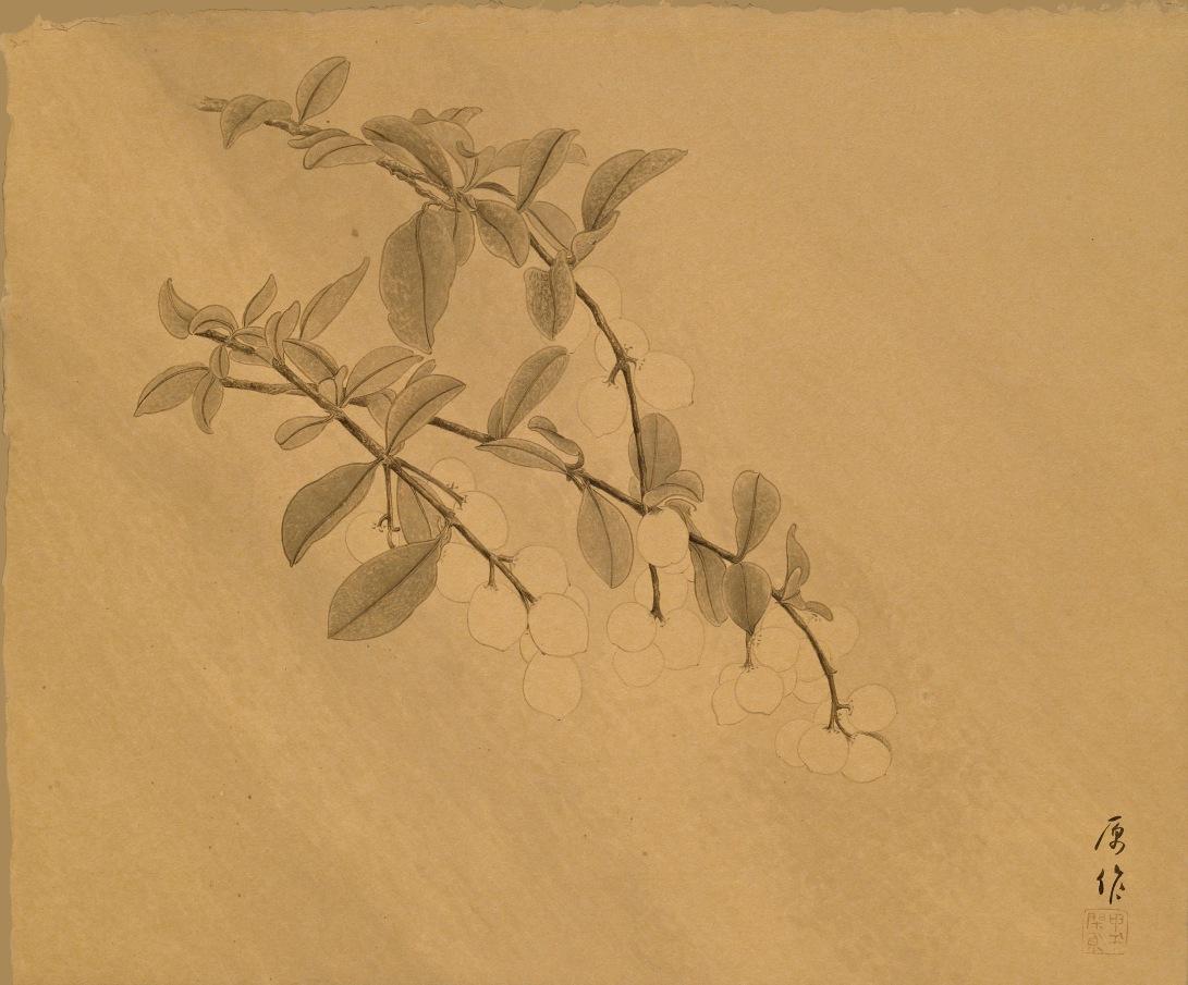 30雨季的原作 2014 水墨、泥金宣 38x46cm(2才)