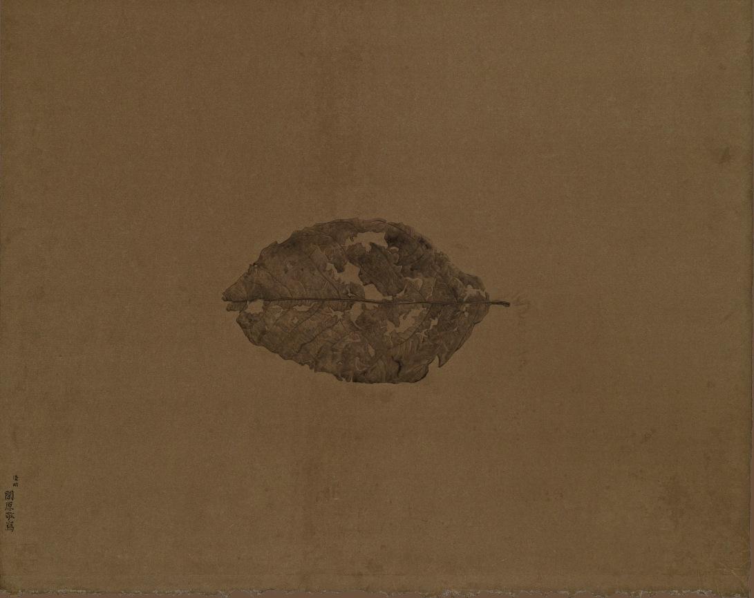 31 THE EARTH 2014 水墨、泥金宣 38x48cm(2才)