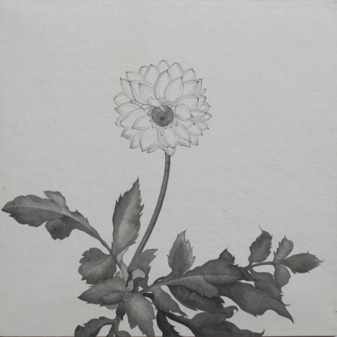 閑原 小草圖冊2- (15) 2012-2013紙本水墨畫 32x32cm