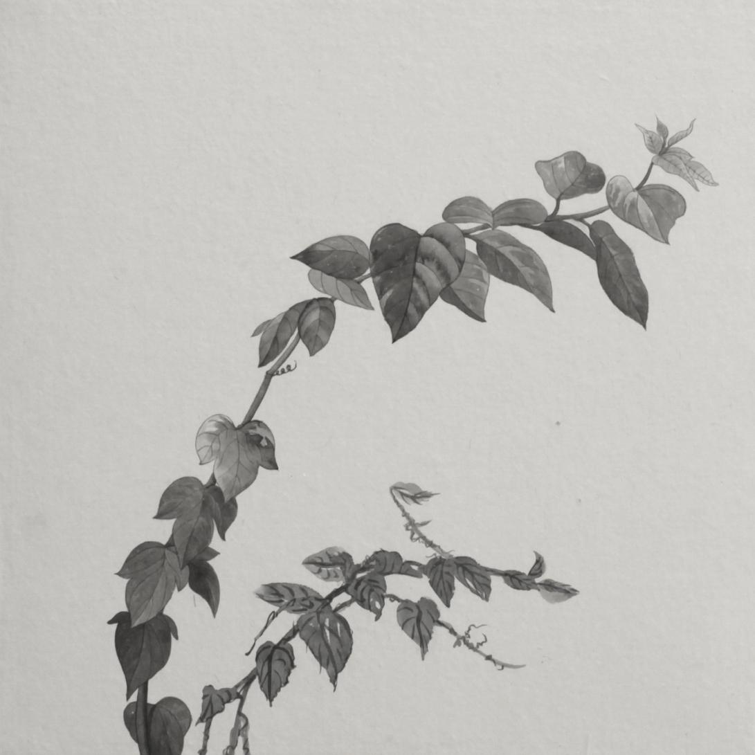 閑原 小草圖冊2- (21) 2012-2013紙本水墨畫 32x32cm