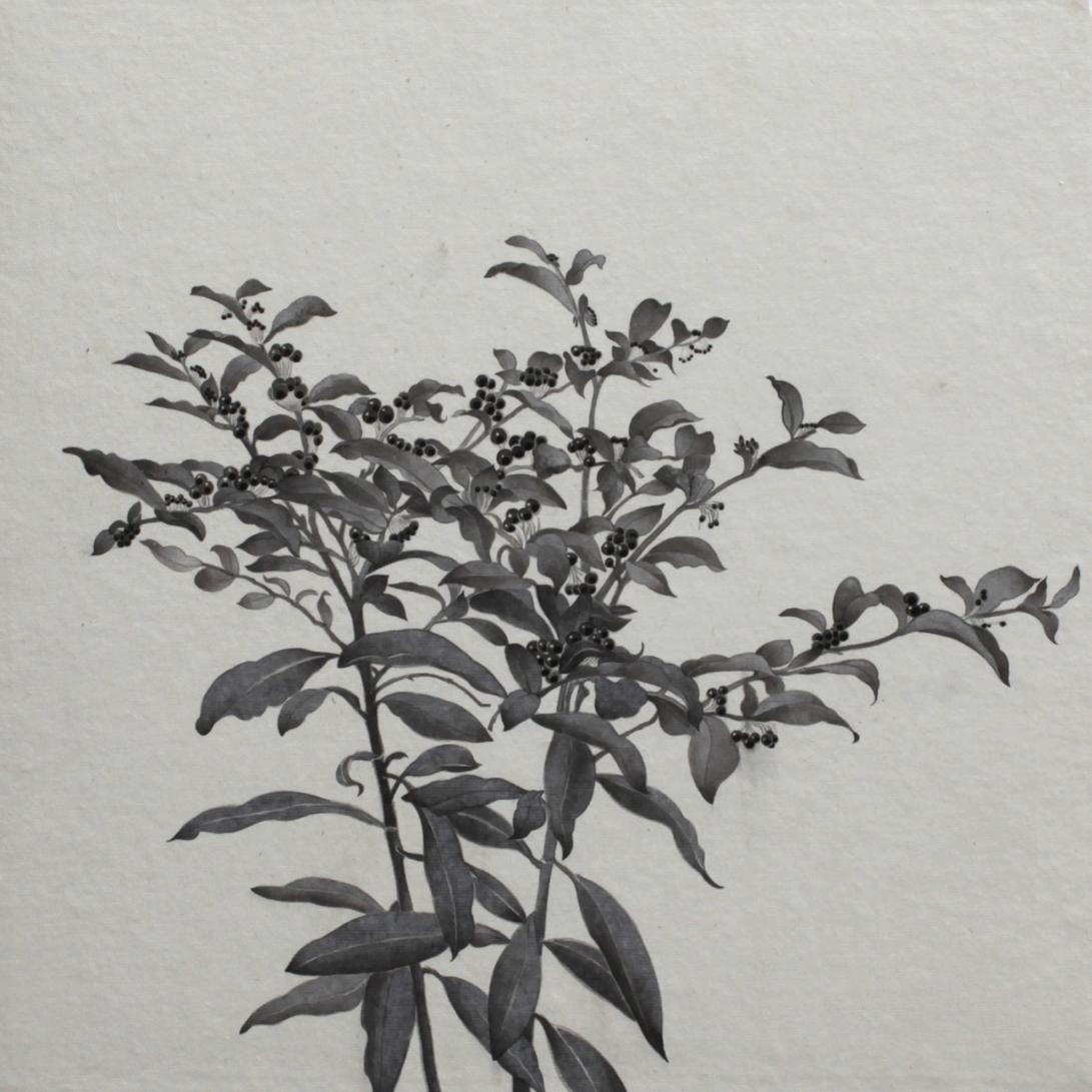 閑原 小草圖冊2- (23) 2012-2013紙本水墨畫 32x32cm