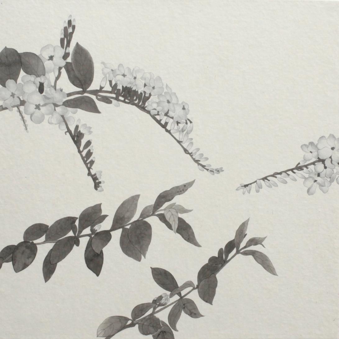 閑原 小草圖冊2- (35) 2012-2013紙本水墨畫 32x32cm
