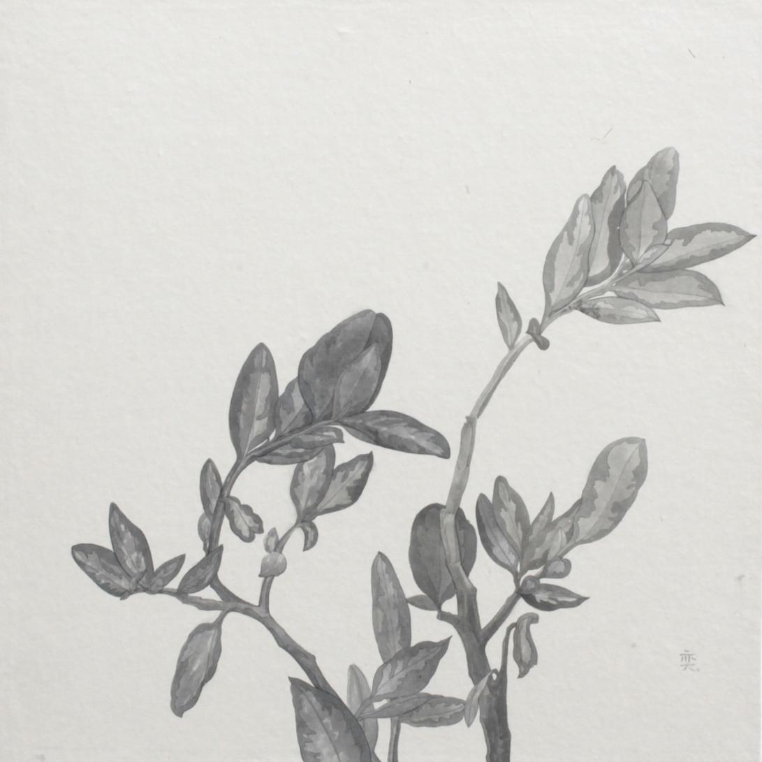 閑原 小草圖冊2- (38) 2012-2013紙本水墨畫 32x32cm