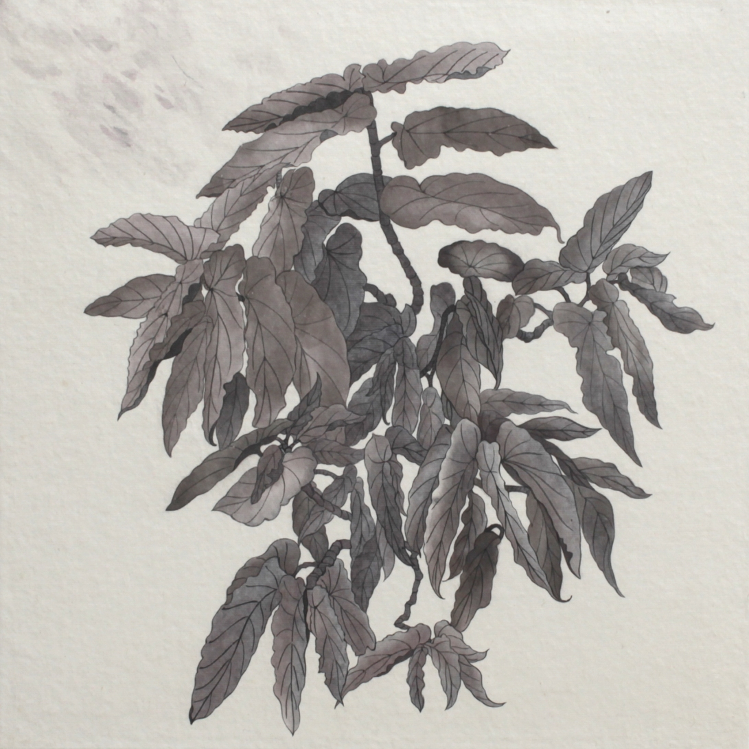 閑原 小草圖冊2- (44) 2012-2013紙本水墨畫 32x32cm