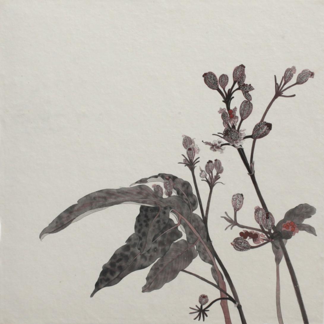 閑原 小草圖冊2- (9) 2012-2013紙本水墨畫 32x32cm
